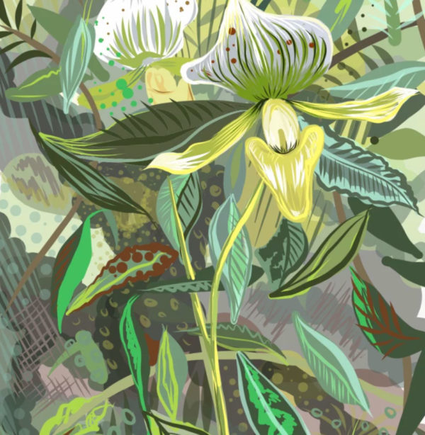 Tropical Plants Art Print By Tartan Zebra